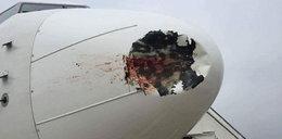 71 pasażerów o włos od śmierci! Uratowały ich mocne nerwy
