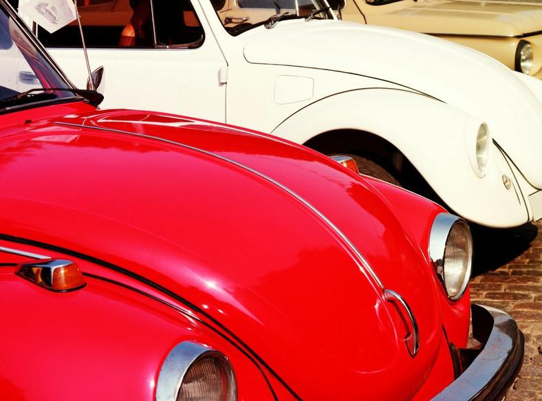 Garbus był pierwszym Volkswagenem, który zdobył wielką popularność - wyprodukowano go w około 21,5 milionach sztuk