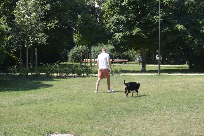 Psy załatwiają się w Parku Staszica we Wrocławiu nie tylko w wyznaczonych miejscach