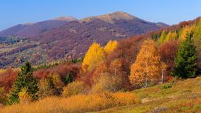 Górskie szlaki w Polsce idealne na jesień