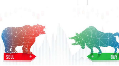 Are you a bull or a bear? 5 interesting terms used in Forex