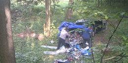 Przyjechali do lasu i... Ich niechlubny czyn nagrała fotopułapka