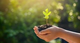 Ochrona klimatu podczas zakupów – Lidl wkrótce wprowadzi do asortymentu produkty neutralne dla klimatu