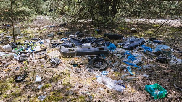 Dzikie wysypisko śmieci w lesie
