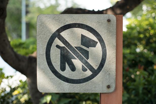 Zakaz wejścia z psem nadmiernie ogranicza swobodę ich właścicieli