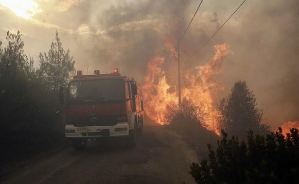 Szalejące w Grecji pożary są jednymi z najtragiczniejszych w skutkach w Europie w XXI wieku.