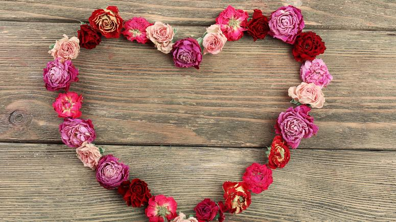 Walentynki 2019 życzenia śmieszne I Sms Y Prezenty I życzenia