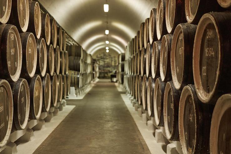 vinarija shutterstock 1697141644