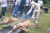 pirotsko jagnje -maskota kraj raznja