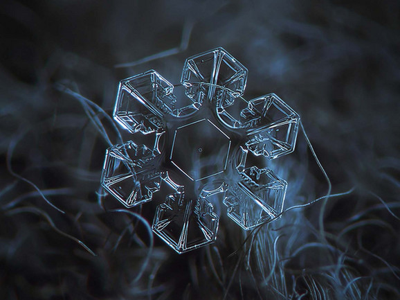 Sledeći put kada bude padao sneg, pokušajte da uočite simetriju pahuljica (FOTO: Alexey Kljatov)