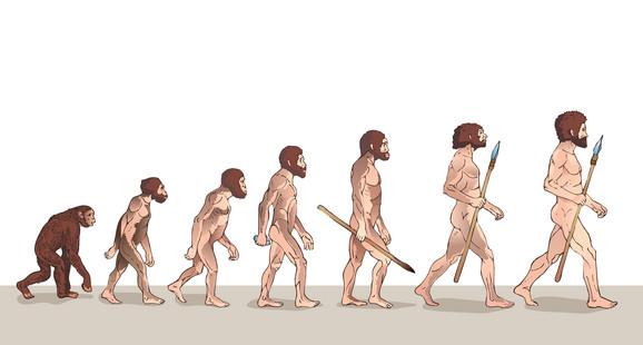 Čovek je nastao od majmuna? Ili možda nije? Potpisnici peticije izražavaju sumnju u ovo učenje