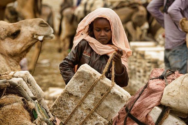 Stanovnici pustinje Danakil