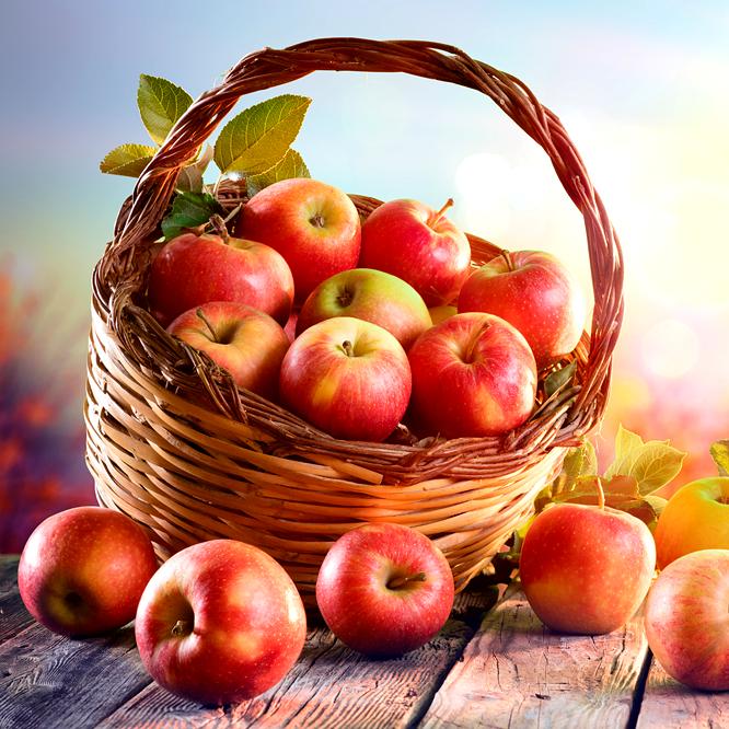 Ízületi fájdalomból adam alma, Kenőcs ízületi fájdalmak és ízületi fájdalmak kezelésére