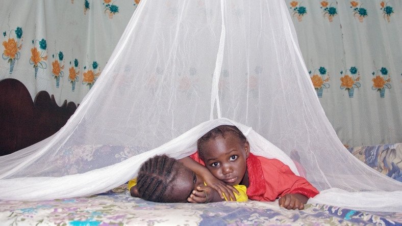 Children under a mosquito net, one of the preventative measures against malaria (Net photo)