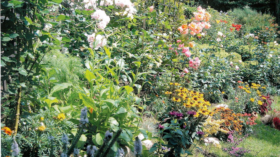 Aranżacja autorstwa Katarzyny Osieckiej i Krystyny Bilkiewicz, w której przeważają róże, rudbekie i aksamitki
