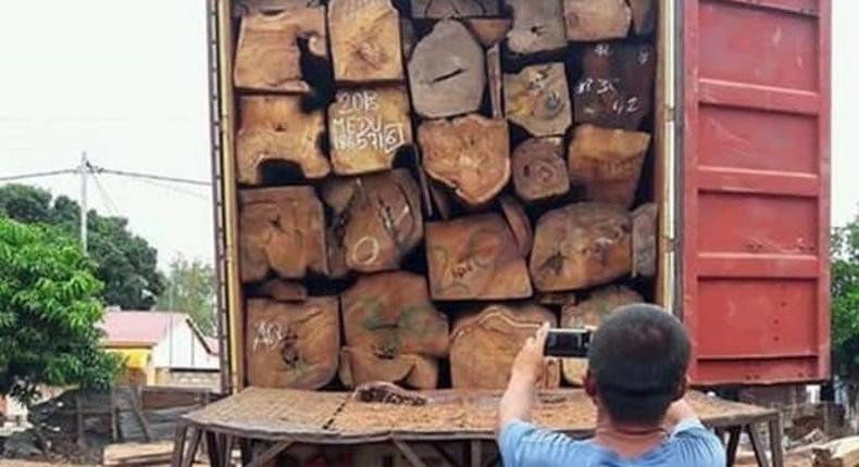 Trafic de bois