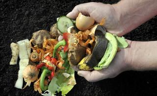 Gminy planują obecnie, jak uwzględnić ulgę za kompostowanie