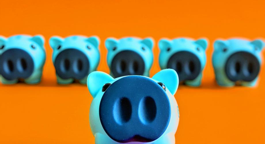 Schnaeppchen Schweine