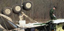 Rzecznik rządu: Brzoza nie była przyczyną katastrofy!
