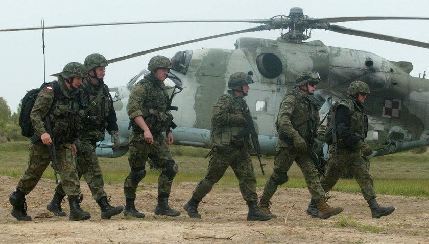 Żołnierze Kawalerii Powietrznej