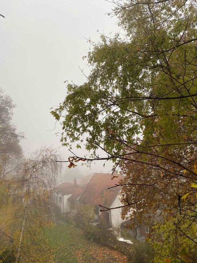 Karaburma - magla u potpunosti sakrila Pančevački most