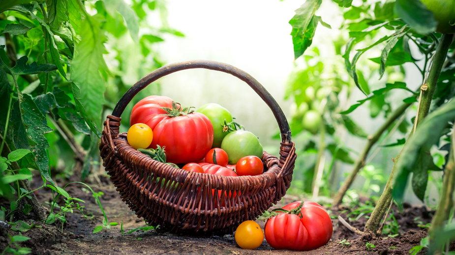 Aromatyczne pomidory na zimę. Przepis na pomidory w słoiku!