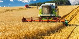 Te zmiany najbardziej dotkliwie uderzą w interesy polskiego rolnika!