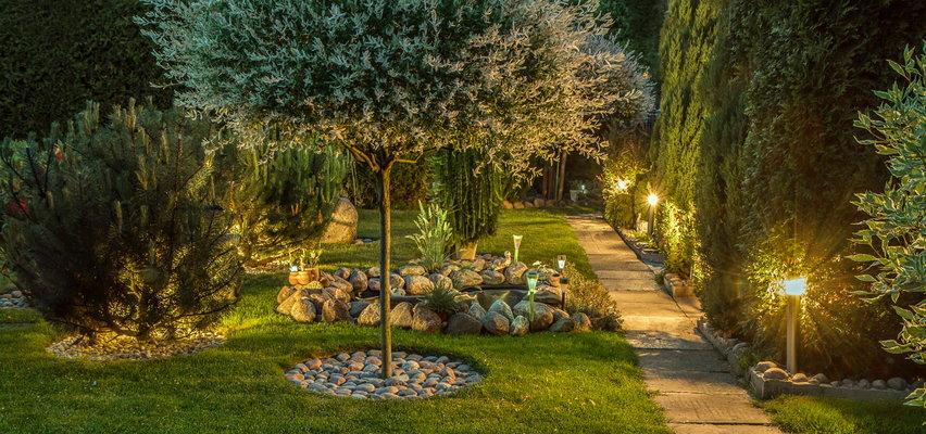 Lampy solarne na balkon i do ogrodu. Sprawdź nasze okazje!