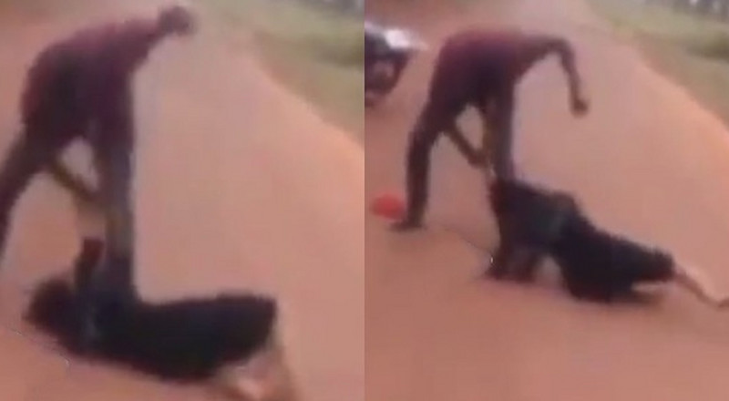 Don't dare come close to me! - Man warns as he beats a woman in the middle of the road