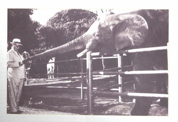 I Tito je voleo Zoo vrt