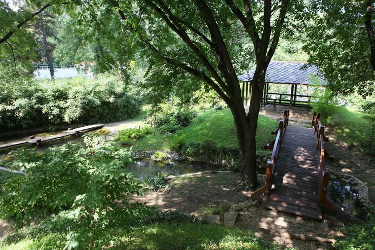 Botanička bašta Jevremovac, zaboravljeni raj u centru Beograda - Page 2 4ofk9lLaHR0cDovL29jZG4uZXUvaW1hZ2VzL3B1bHNjbXMvTlRFN01EQV8vOGFkOWFlM2E2ZmFkOWRiZWE1NjFiZTZmMmMwNTNiZWIuanBnkZMCzQLkAIEAAQ