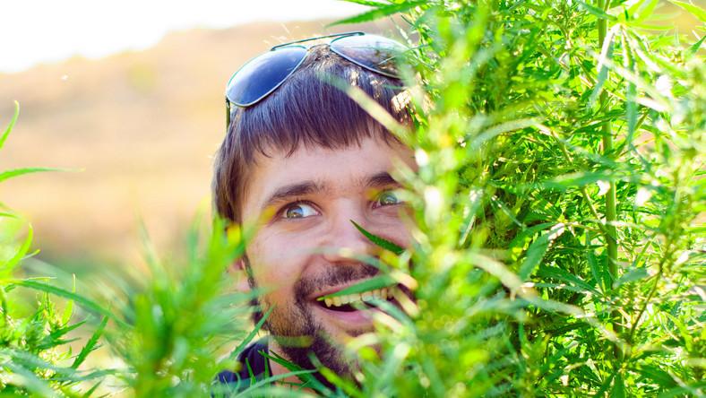 Sięganie po marihuanę poniżej 15. roku życia ma największy wpływ na zdolności intelektualne