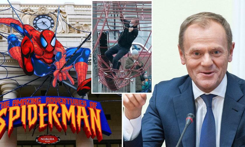 Donald Tusk jak Spider-Man!