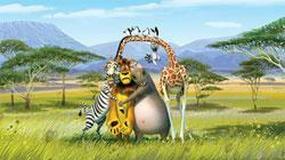 """Międzynarodowy sukces """"Madagaskaru 2"""""""