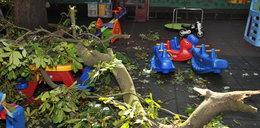 Dramat w Toruniu. Konar spadł na plac zabaw. Bawiły się tam dzieci