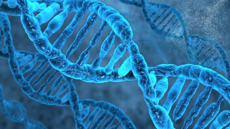 DNA mogło powstać dzięki meteorytom