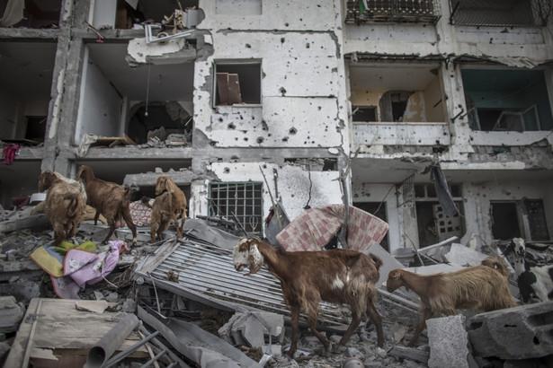 Ostrzelana Strefa Gazy. Fot. EPA/OLIVER WEIKEN