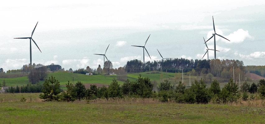 Farmy wiatrowe - czy są konkurencją dla paneli fotowoltaicznych?