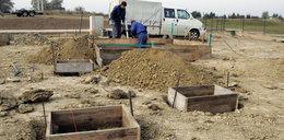 W Kokoszkach powstaje cmentarz dla zwierząt