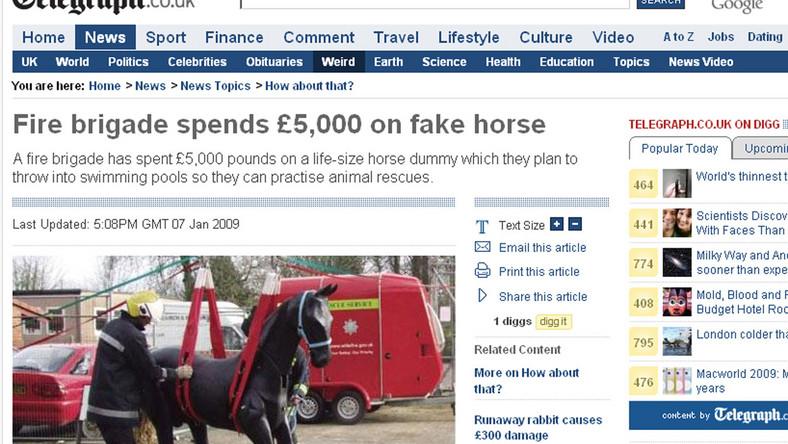 Strażacy kupili sobie dmuchanego konia