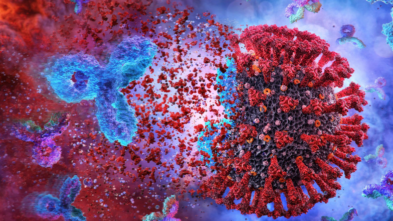 Przeciwciała SARS-CoV-2, koronawirus
