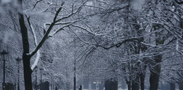 Śnieg na Wszystkich Świętych! Zobaczcie prognozę pogody