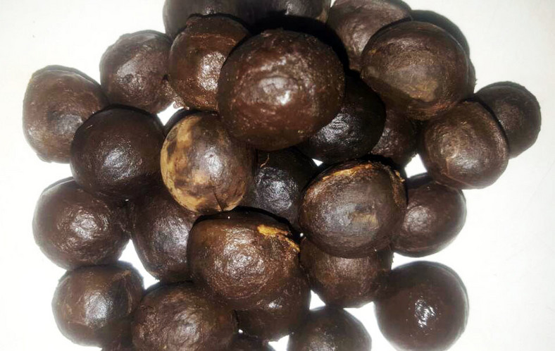 African Walnut is beneficial to the health [Nairaland]
