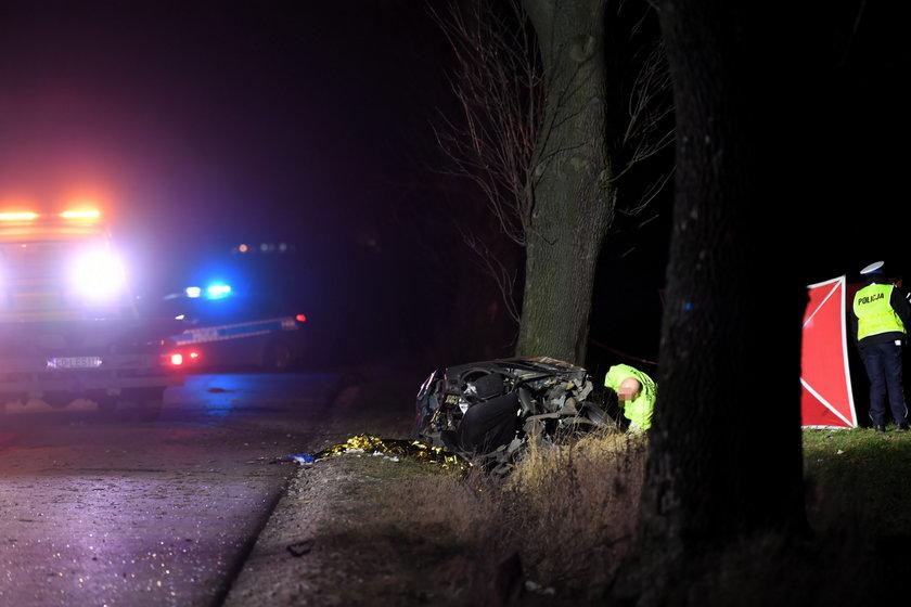 Tragiczna śmierć matki z maleńkim dzieckiem. Ich auto zderzyło się z dzikiem