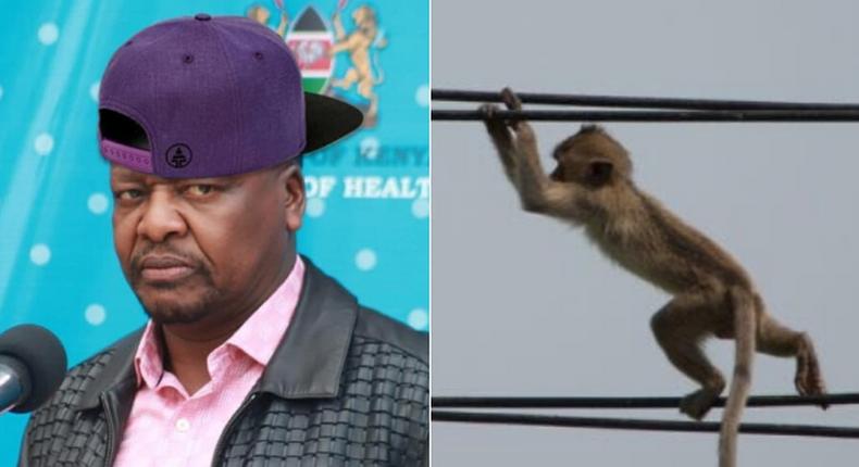 Funny memes Kenyans are sending after Kenya Power, Umeme Uganda announced nationwide power outages