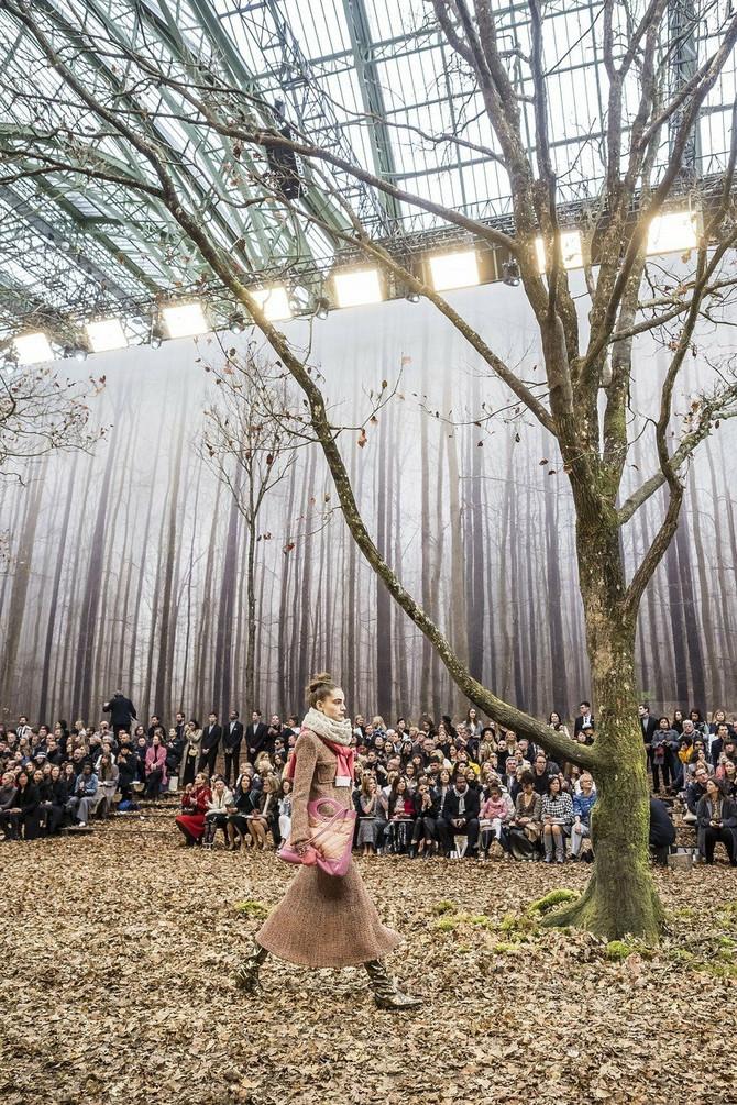 Staklenik pretvoren u začaranu šumu