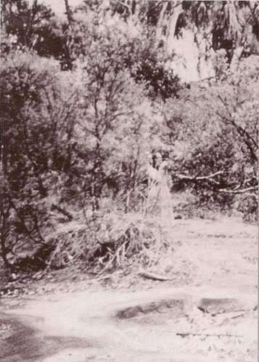 Zdjęcia duchów