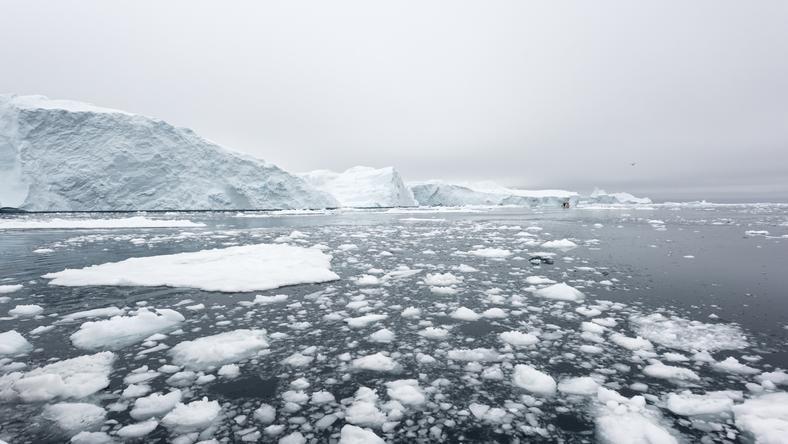 Dziura wielkości Holandii pojawiła się na Antarktydzie
