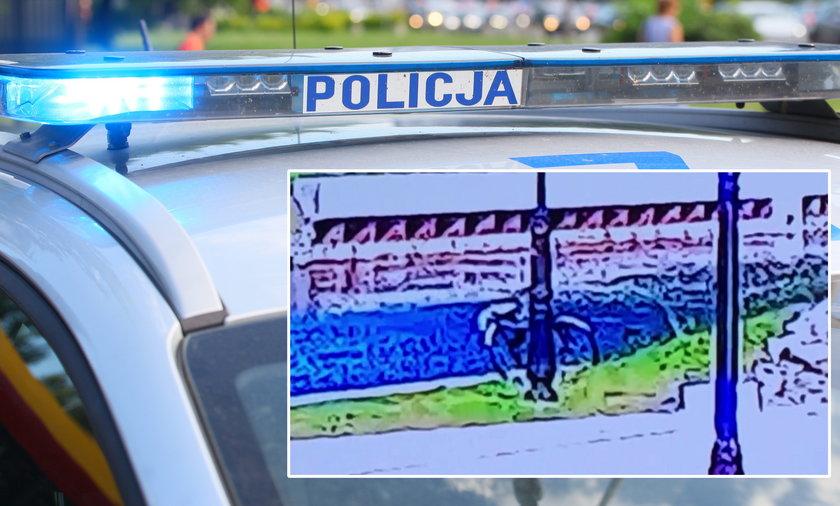 Zgłosił kradzież roweru, policjanci przejrzeli monitoring. Tego się nie spodziewali