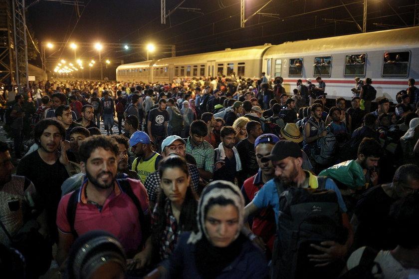 Uniwersytet Jagielloński chce przyjąć uchodźców